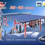 Tenis Meja Pingpong  Outdoor merk DOUBLE FISH AW - 168