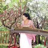 Musi Guzheng Parmonas